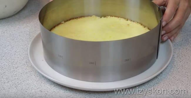 В разъемное кольцо кладем первый корж и таким образом формируем наш творожный торт