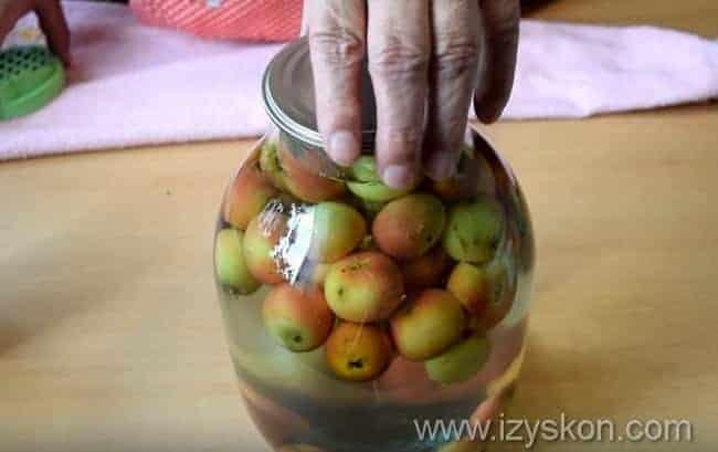 как сделать компот из ранеток на зиму по пошаговой инструкции