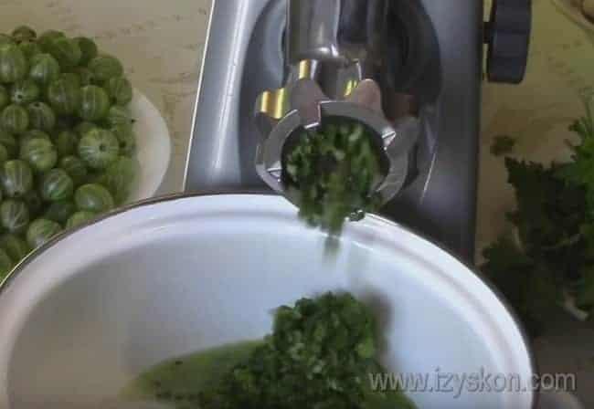 Чтобы приготовить соус из зеленого крыжовника, пропускаем ягоды вместе с чесноком и зеленью через мясорубку.