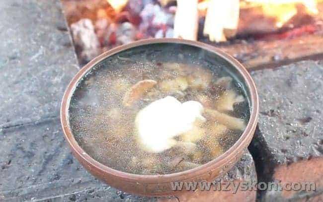 Надеемся, вам понравился наш рецепт грибного супа из свежих лесных грибов.