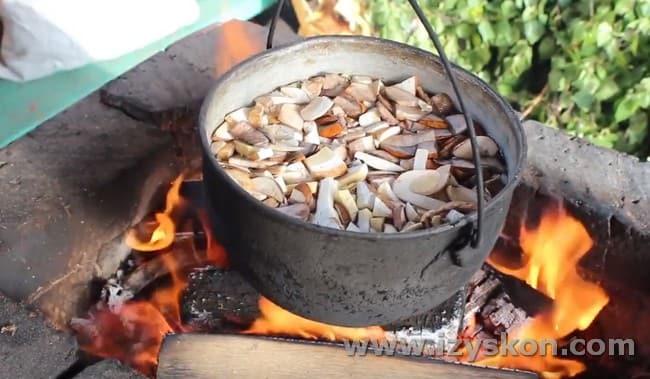 Нарезанные грибы заливаем в кастрюле водой и ставим вариться.